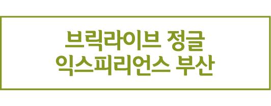 브릭라이브 정글 익스피리언스 부산