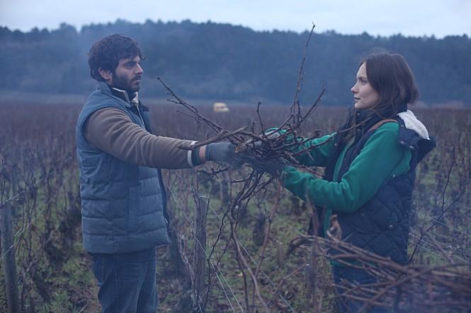 영화 <부르고뉴, 와인에서 찾은 인생> 스틸컷 이미지5
