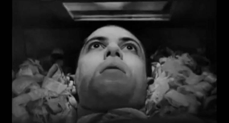 월드시네마 XVI 상영작 <뱀파이어> 스틸컷 이미지 05