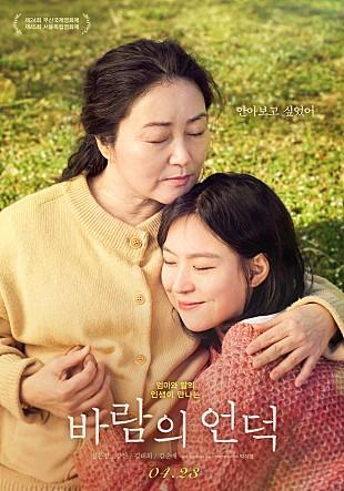 안아보고 싶었어 엄마와 딸의 인생이 만나는 바람의 언덕