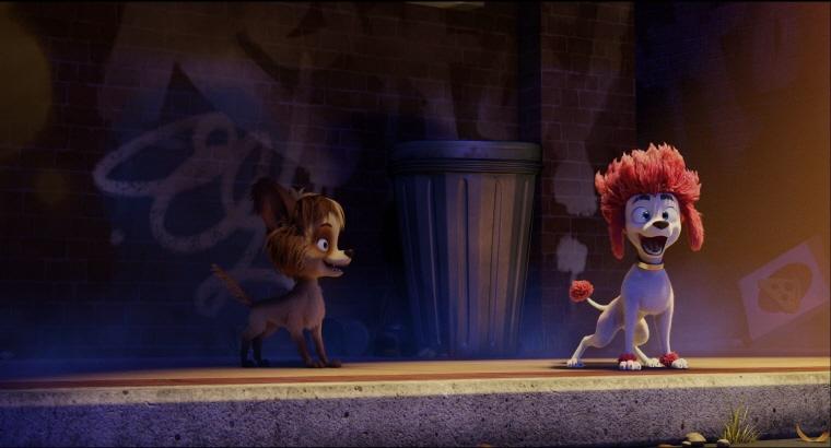 (2020 BIKY)완벽한 늑대가 되는 법(라이브더빙)(테크) 스틸 컷